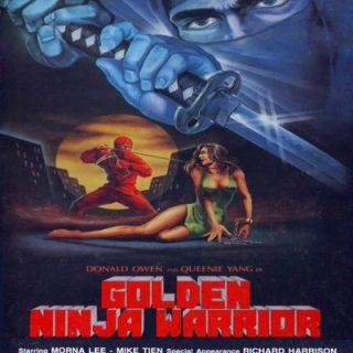 Golden Ninja Warrior – 1986 – Meet the red ninja